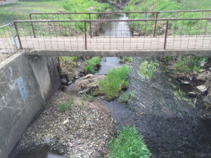A picture of an old slab bridge across a creek.